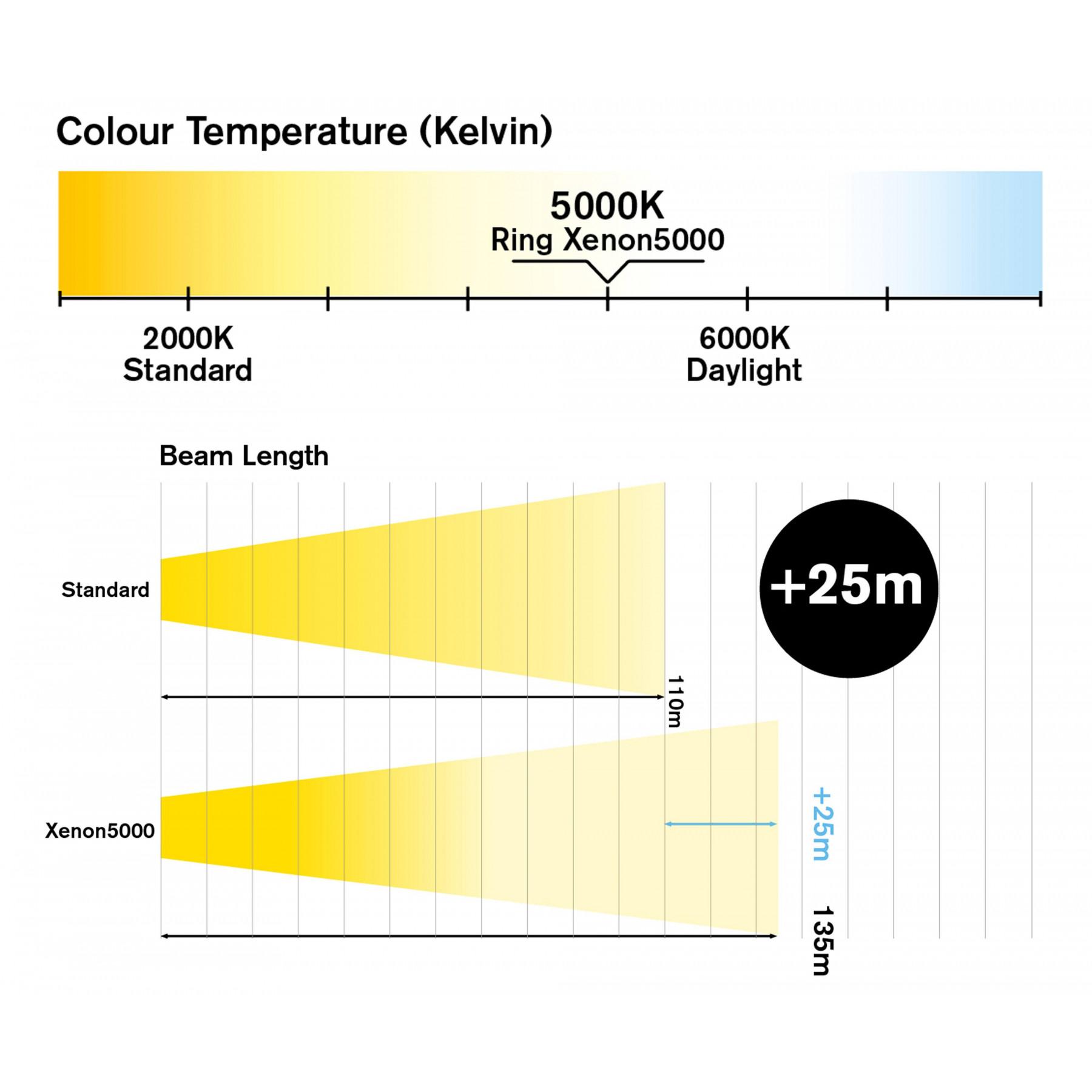Gloeilamp H4 Xenon effect 5000K 12v 55w set 2st.