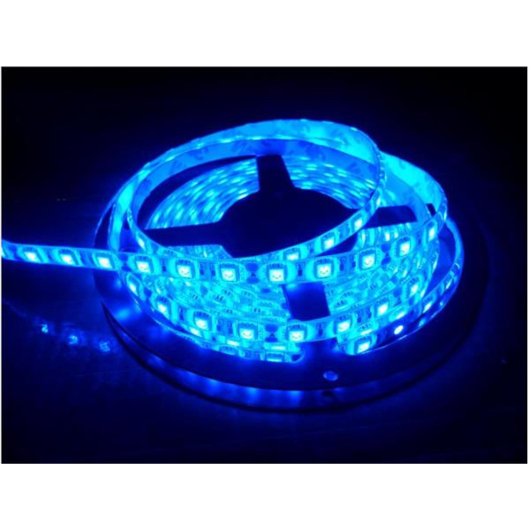 LED strip 4,8W 60LEDs/m Blauw 5m 12V